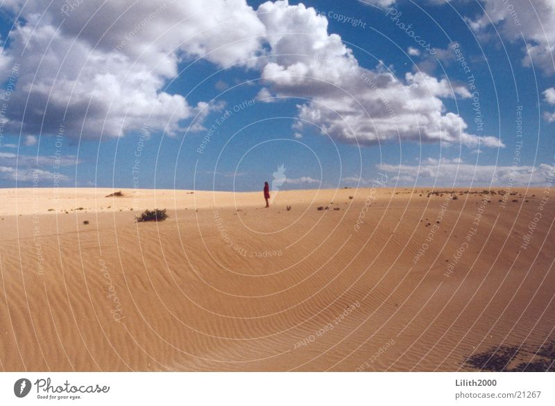 Unendliche Weiten Wolken Sand Wüste Stranddüne Himmel Mensch Sonne