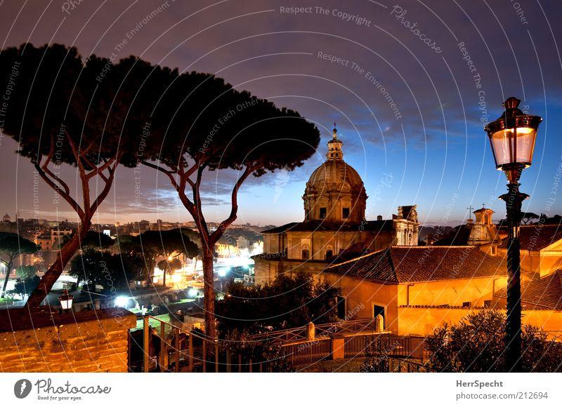 Campidoglio-Blick, blaue Stunde schön Baum Stadt ruhig Haus Ferne Stimmung ästhetisch Italien Kirche Romantik Laterne Hauptstadt Altstadt
