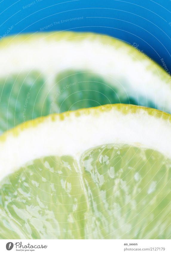 Citrus Lebensmittel Frucht Zitrone Limettenscheibe Limone Zitronenscheibe Getränk trinken Erfrischungsgetränk Limonade Saft Longdrink Cocktail Lifestyle
