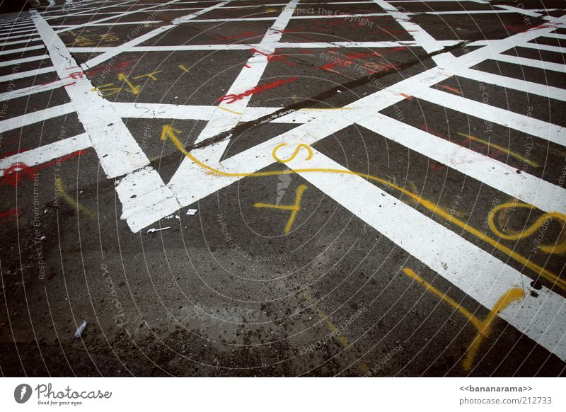 Immer der Beschriftung folgen weiß Straße Graffiti grau Stein Linie Schilder & Markierungen Beton Verkehr verrückt Schriftzeichen Boden Asphalt Zeichen Pfeil