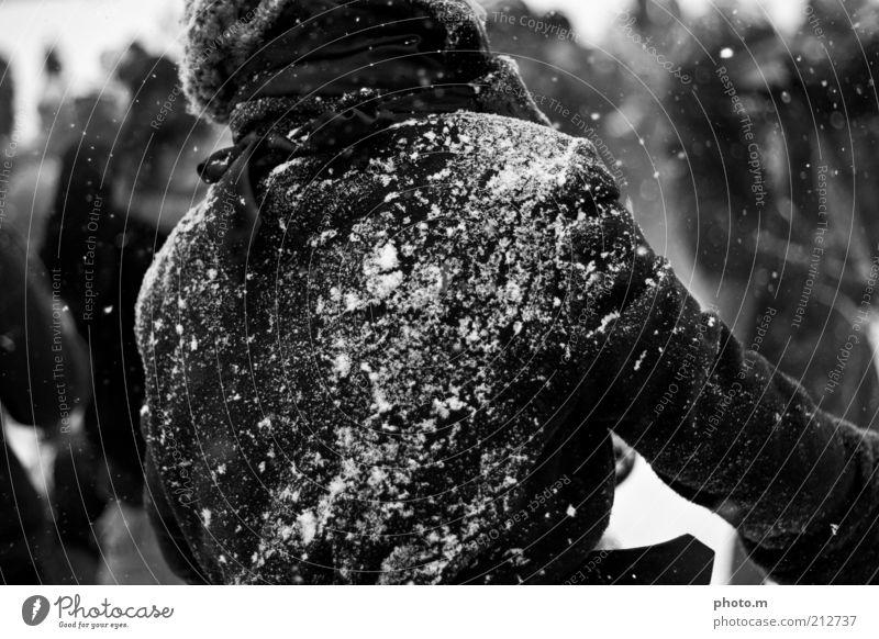 Schneeballschlacht Mensch Freude Winter Spielen Schneefall maskulin Jacke Mantel werfen Ausgelassenheit Schneeballschlacht