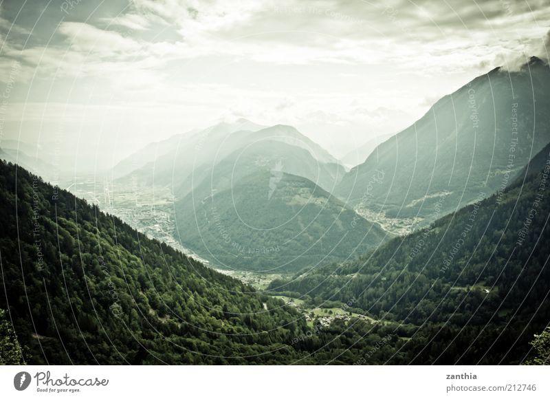 Alpen Natur Landschaft Pflanze Himmel Wolken Sommer Wald Berge u. Gebirge grün weiß Erholung Ferien & Urlaub & Reisen Freizeit & Hobby ruhig Umwelt Ferne