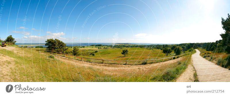 Hiddensee Himmel Natur blau Ferien & Urlaub & Reisen grün Sonne Sommer Meer ruhig Landschaft Wiese Wege & Pfade Küste Horizont Stimmung Feld