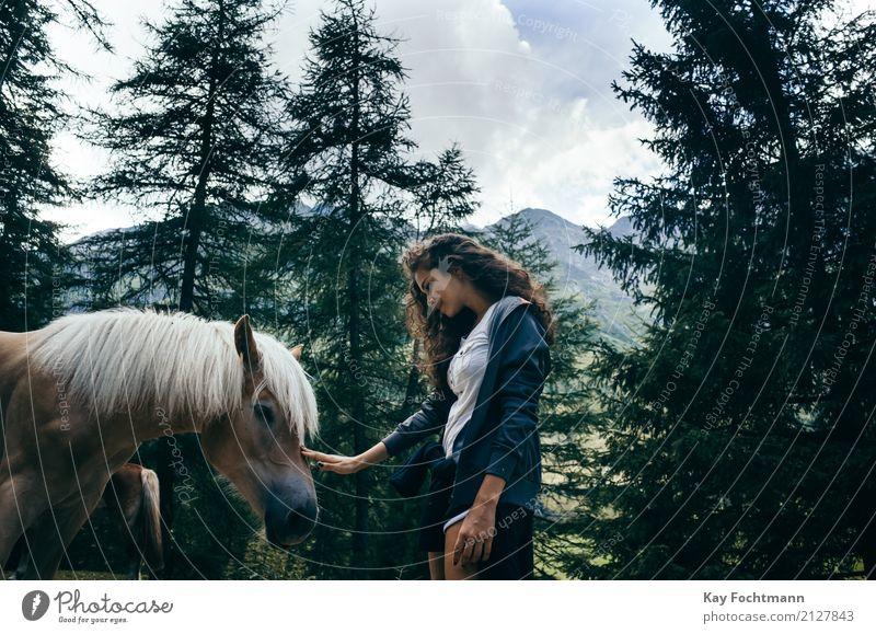 Junge Frau streichelt Pferd im Wald Ferien & Urlaub & Reisen Abenteuer Freiheit Sommer feminin Jugendliche Leben 1 Mensch 18-30 Jahre Erwachsene Landschaft