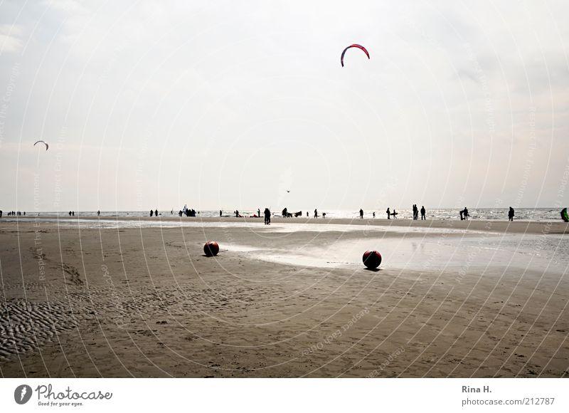Herbstboten II Wasser Himmel Meer Freude Strand Ferien & Urlaub & Reisen Erholung Herbst Menschengruppe Luft Zufriedenheit Küste Wind fliegen Horizont Ausflug