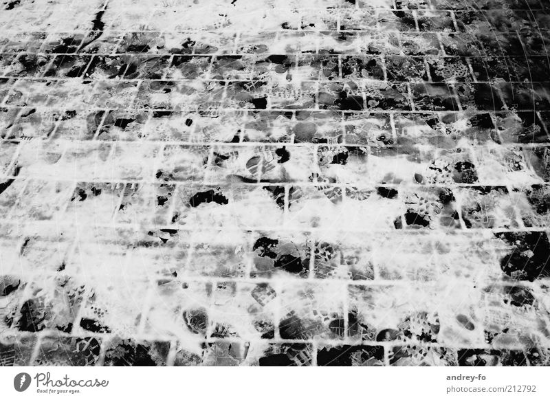 Spuren im ersten Schnee. weiß Winter schwarz Straße kalt grau Wege & Pfade Stein Eis gehen nass Frost Fliesen u. Kacheln Bürgersteig