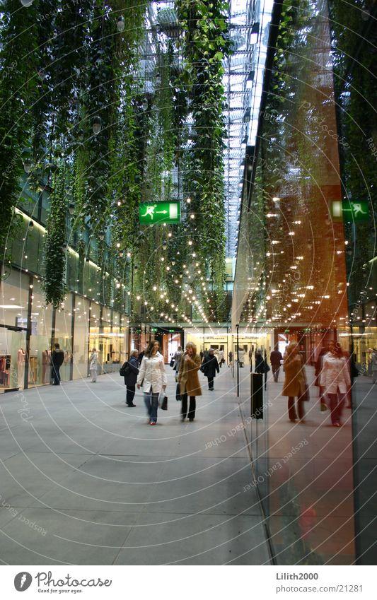 Fünf Höfe Mensch grün Architektur Glas kaufen München Stadtzentrum Reflexion & Spiegelung Fußgänger Liane