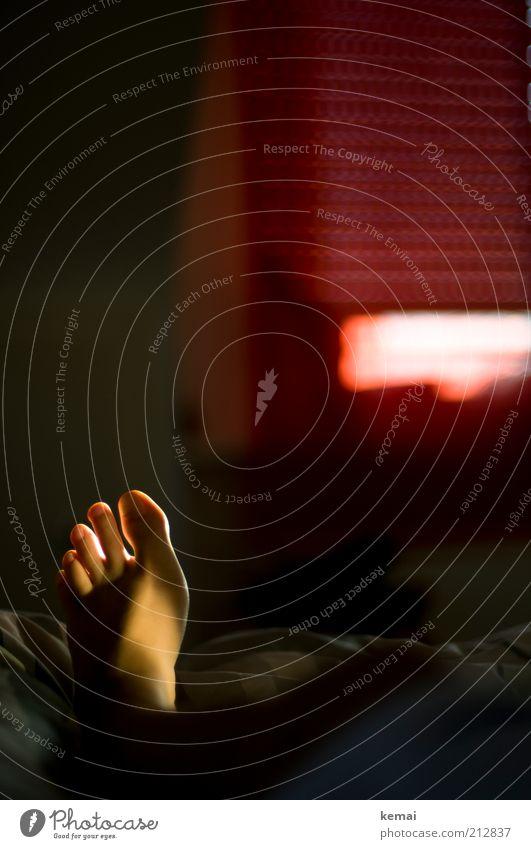 Links Mensch Frau rot ruhig Erwachsene Erholung dunkel Fenster Fuß liegen Wohnung leuchten schlafen Häusliches Leben Pause Bett
