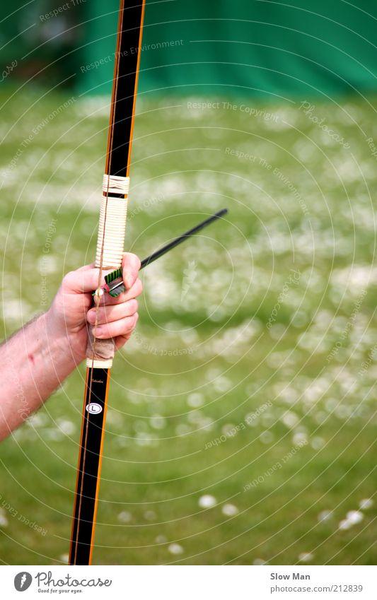 Konzentrationsphase... Natur Hand Wiese Sport Holz Fliege Ziel Pfeil Konzentration Jagd Gewalt Bogen Sportbogen Griff Jäger Waffe
