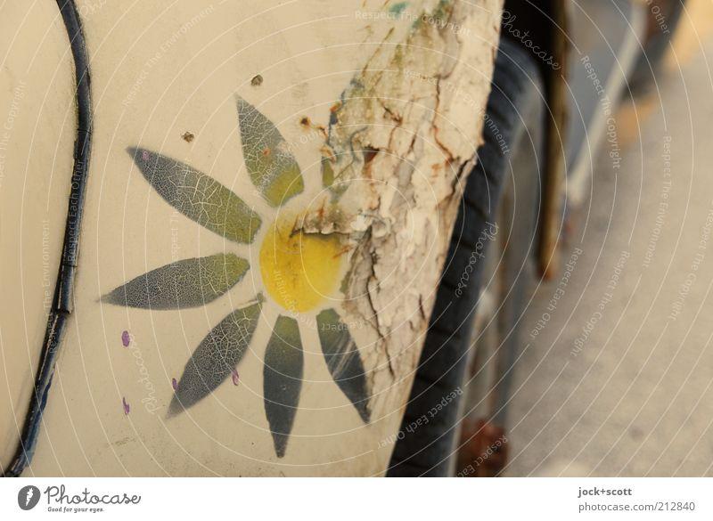 florale Rostlaube Stil Korfu PKW Metall Ornament alt kaputt retro trashig Nostalgie Verfall Vergänglichkeit Wandel & Veränderung Kotflügel Druckfarbe Schaden