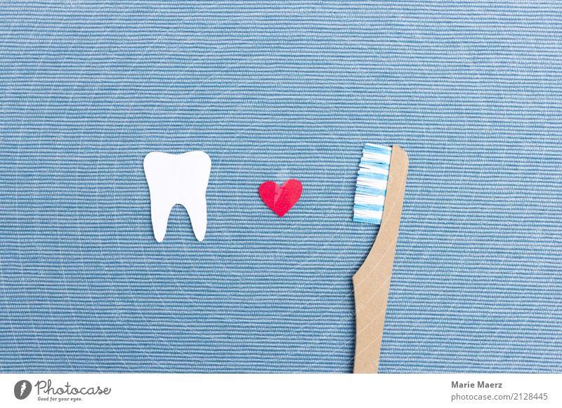 Zähne putzen Körperpflege Zahnbürste Reinigen frisch glänzend Glück schön blau weiß Tugend diszipliniert Gesundheit Zahnpflege dental Zahnarzt Farbfoto
