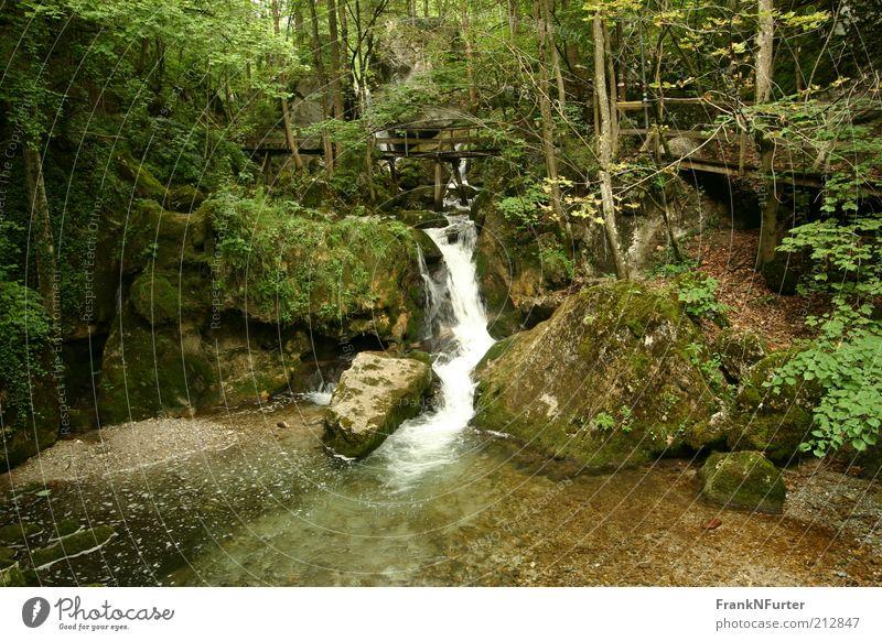 Blazing a Trail Freizeit & Hobby Ferien & Urlaub & Reisen Ausflug Sommer Sommerurlaub Berge u. Gebirge Umwelt Natur Landschaft Pflanze Urelemente Wasser