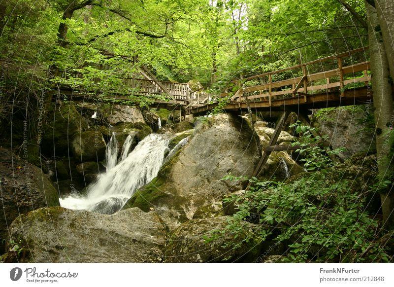Supporting Rock Natur Wasser Baum Pflanze Sommer Ferien & Urlaub & Reisen Wald Berge u. Gebirge Landschaft Umwelt Felsen Ausflug Sträucher Freizeit & Hobby