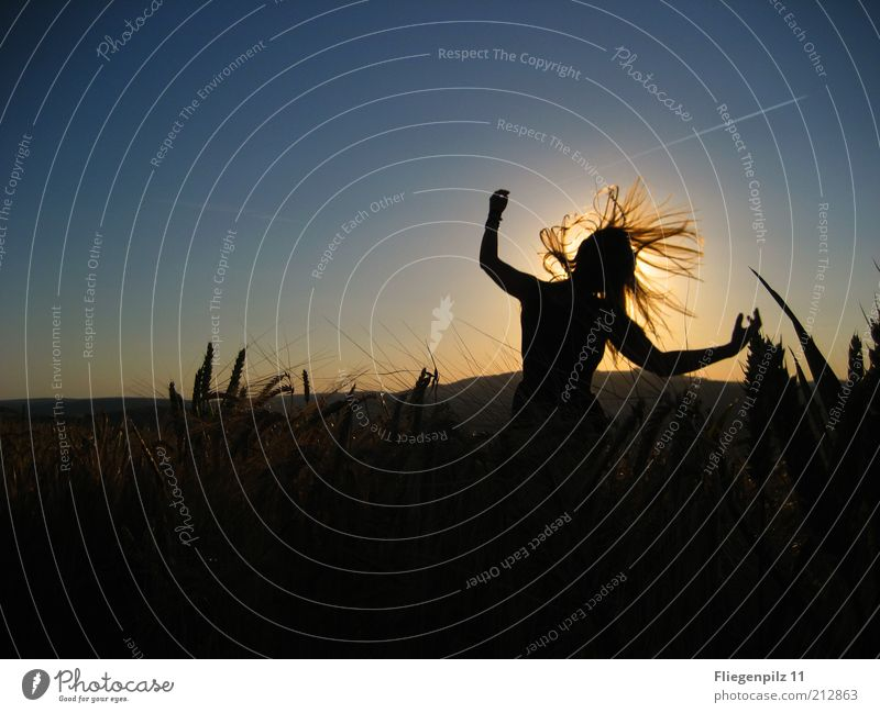 Lebensfreude Mensch Natur Jugendliche Sonne Freude feminin Freiheit Bewegung Glück träumen Stimmung Tanzen Feld verrückt Fröhlichkeit