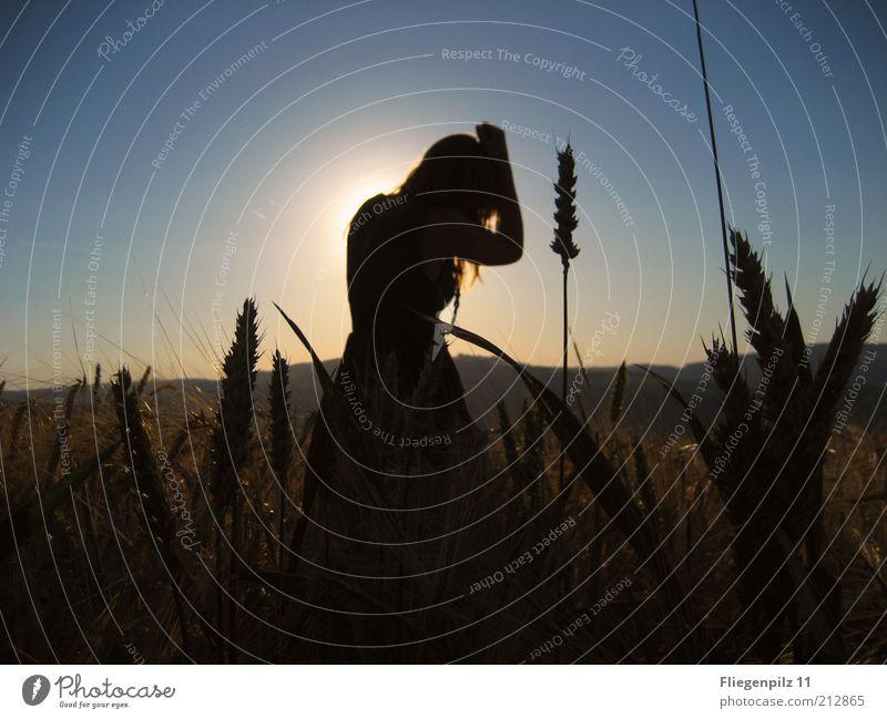 Mädchen im Kornfeld feminin Junge Frau Jugendliche 1 Mensch Natur Wolkenloser Himmel Sommer Feld Bewegung träumen weich Stimmung Schutz Traurigkeit Gefühle