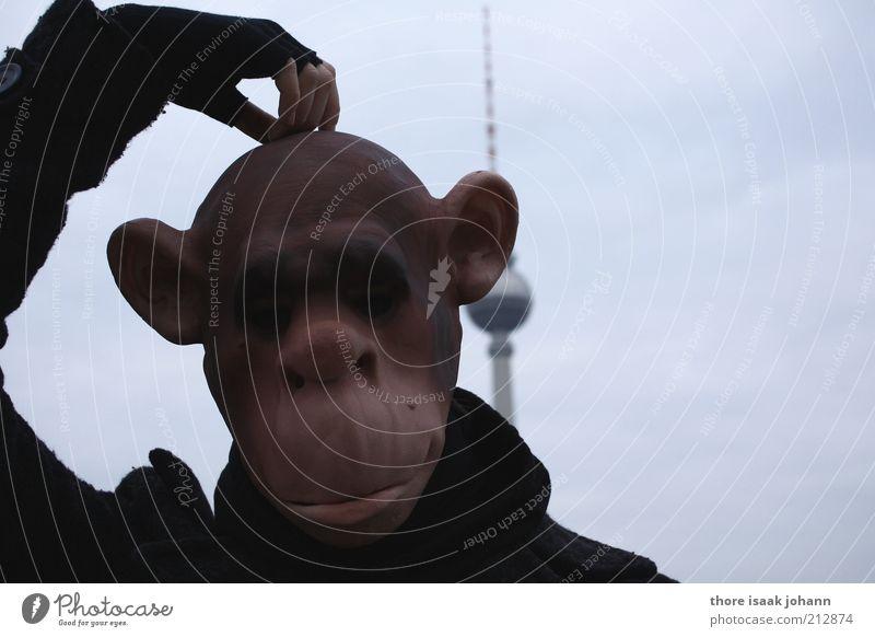 Affenstadt Mensch Hand Kopf Denken lustig Wildtier verrückt Turm nachdenklich Tiergesicht Berlin Maske dumm tierisch Verzweiflung
