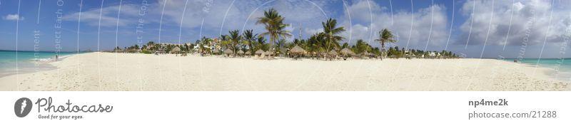Strand Aruba 2 Palme Liegestuhl Weitwinkel Sand Graffiti Paradis