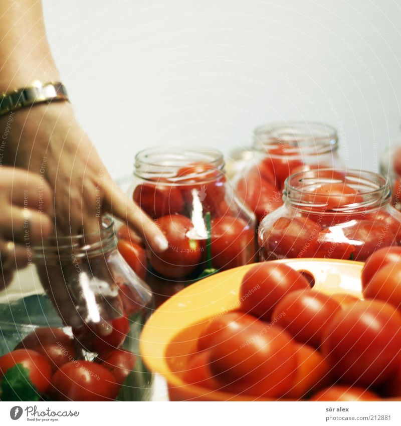 Tomaten hin-einlegen Hand weiß rot Lebensmittel Arbeit & Erwerbstätigkeit Glas Gemüse Gesunde Ernährung lecker Selbstständigkeit Delikatesse selbstgemacht