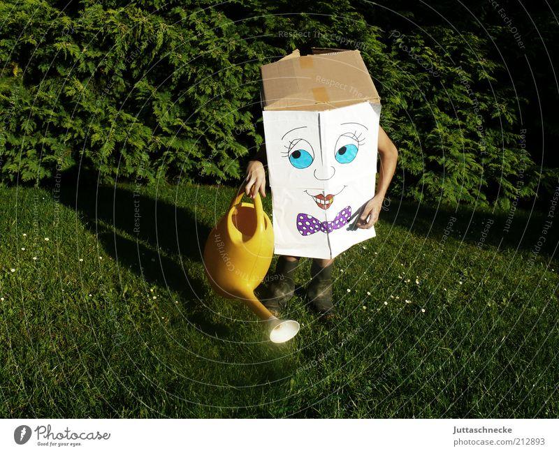 Quadratschädel Gartenarbeit Gärtner 1 Mensch Umwelt Natur Pflanze Sommer Gras Grünpflanze Wiese Gummistiefel Paket Gießkanne Freundlichkeit Fröhlichkeit