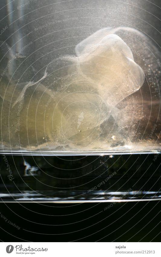 aufgeblasener kerl Lebensmittel Süßwaren Wasser Glas liegen Ekel schleimig Gummibärchen Wasserglas durchsichtig Pastellton Verfall Farbfoto Außenaufnahme