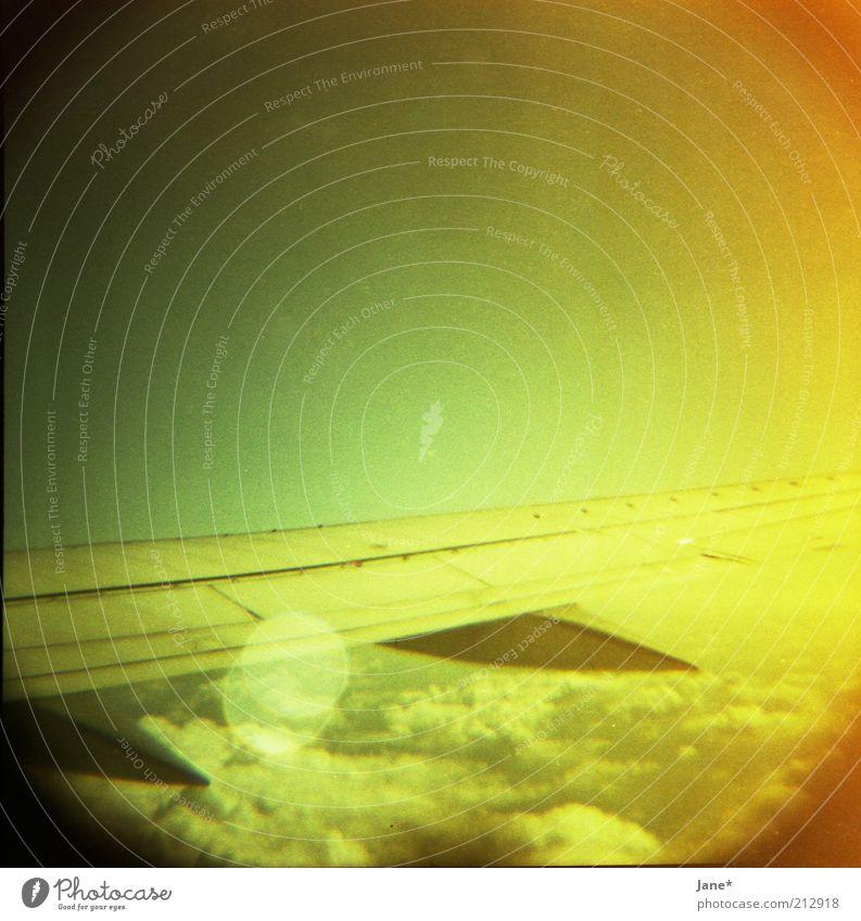 morning elegance Himmel Wolken Schönes Wetter Luftverkehr Flugzeugausblick Gefühle Stimmung Fernweh Farbfoto mehrfarbig Lomografie Menschenleer Morgendämmerung