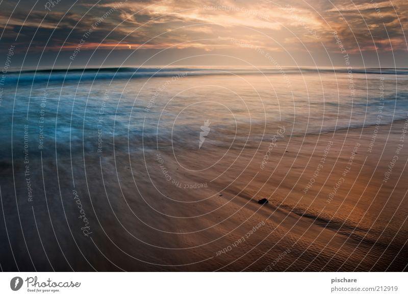keep the ocean clean! Natur Wasser Himmel Sonne Sonnenaufgang Sonnenuntergang Sommer Schönes Wetter Wellen Strand Meer ästhetisch außergewöhnlich fantastisch