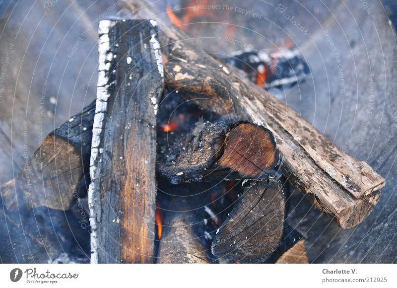 Feuerstelle anzünden Brennholz Rauch Holz heiß Wärme grau rot brennen glühen glühend Glut Farbfoto Gedeckte Farben Außenaufnahme Nahaufnahme Menschenleer Abend