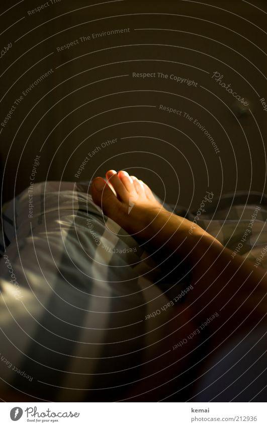 Rechts Häusliches Leben Bett Bettwäsche Bettdecke Mensch Frau Erwachsene Fuß Zehen 1 liegen schlafen dunkel Beleuchtung Lichteinfall Barfuß Farbfoto