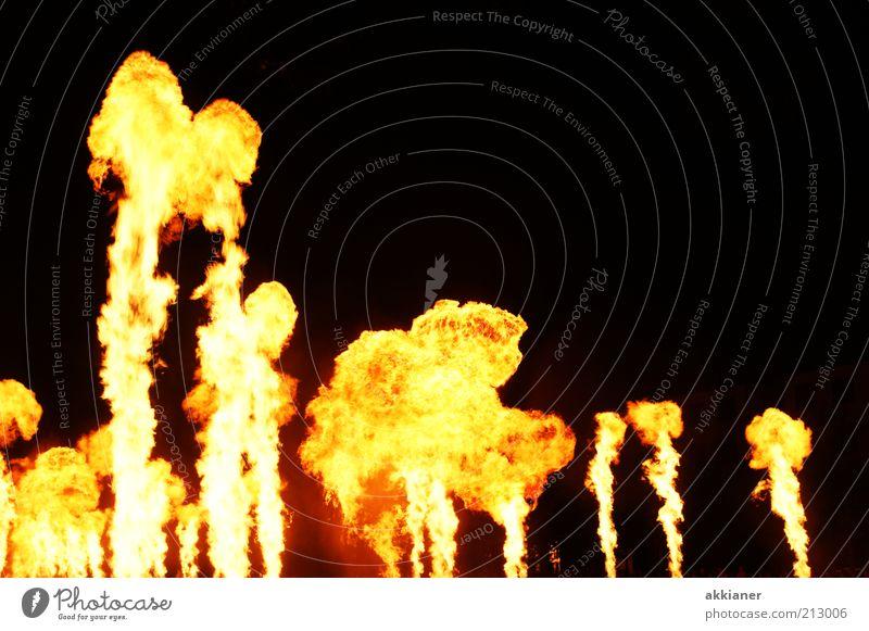 Feuer! Urelemente heiß hell gelb schwarz Flamme Farbfoto mehrfarbig Außenaufnahme Menschenleer Textfreiraum rechts Textfreiraum oben Nacht Licht Freisteller