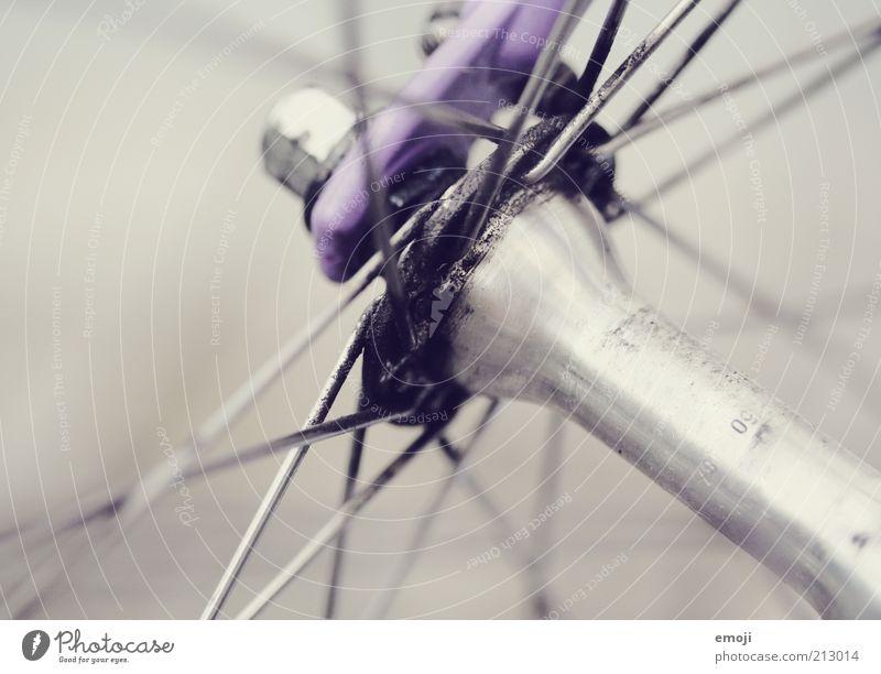 Speiche Fahrrad Metall Metallstange Schmierstoff grau violett Speichen Farbfoto Detailaufnahme Makroaufnahme Hintergrund neutral Schwache Tiefenschärfe Achse