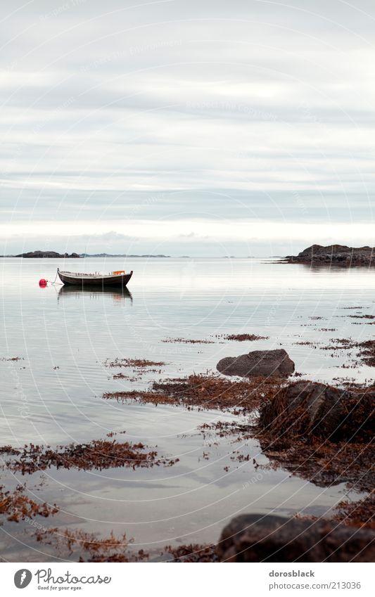 norwegen Natur Wasser Sommer Ferien & Urlaub & Reisen Wolken Erholung Landschaft Küste Horizont Idylle Bucht Norwegen Norden Fjord nordisch Ruderboot