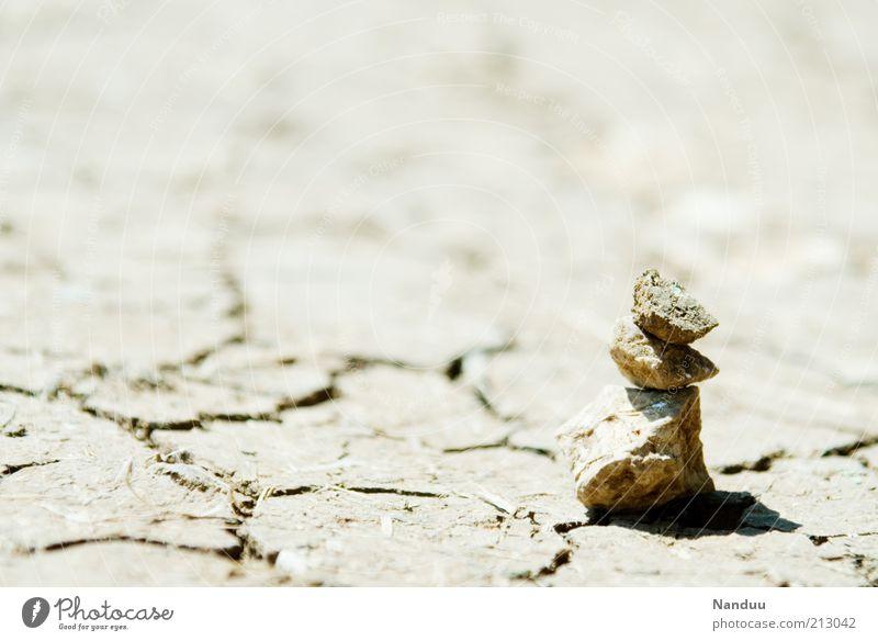 Wüst Sommer Einsamkeit Stein Landschaft Erde trist Boden Wüste Zeichen trocken Riss Dürre vertrocknet Klimawandel getrocknet Natur