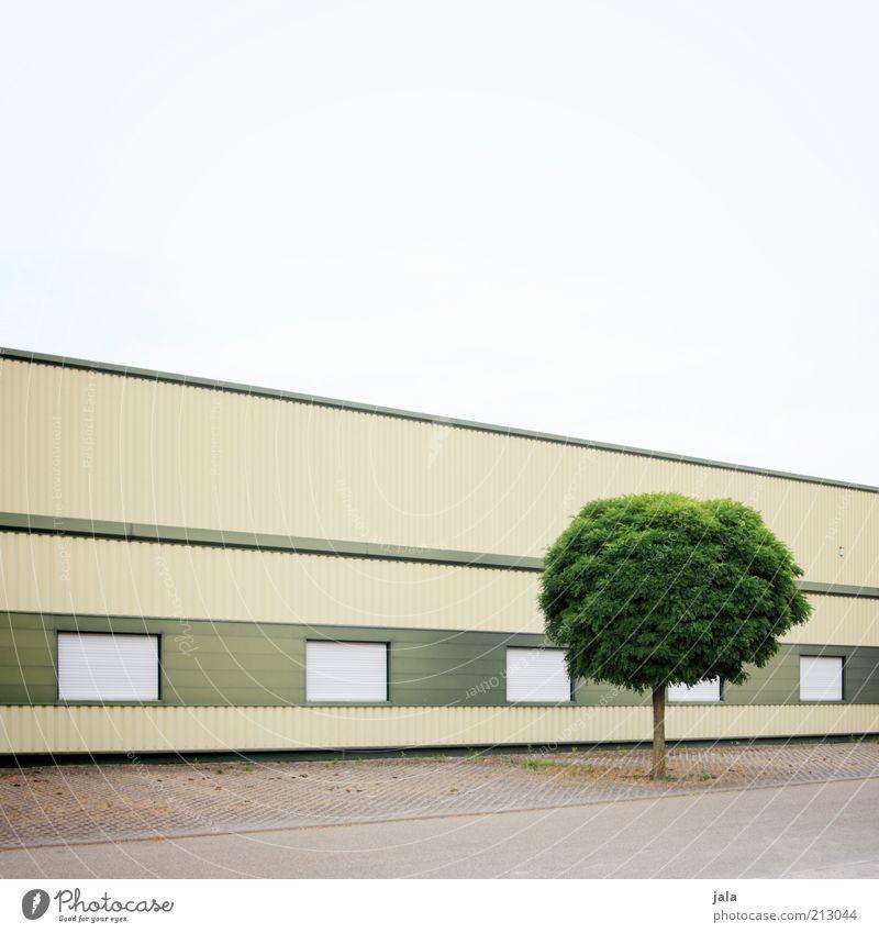 versuchter purismus Himmel Baum Fenster grau Gebäude Linie Architektur Fassade modern ästhetisch Platz Fabrik Bauwerk Fabrikhalle puristisch