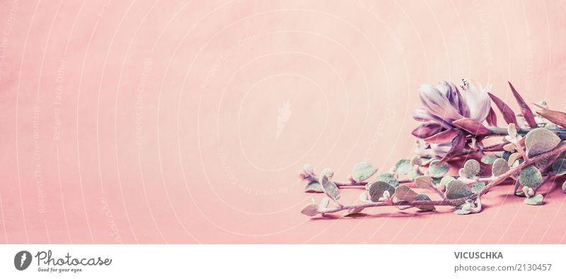 Hübsche Blumen auf rosa Hintergrund Natur Pflanze Sommer Blatt Lifestyle Blüte Hintergrundbild Stil Feste & Feiern Design Dekoration & Verzierung retro