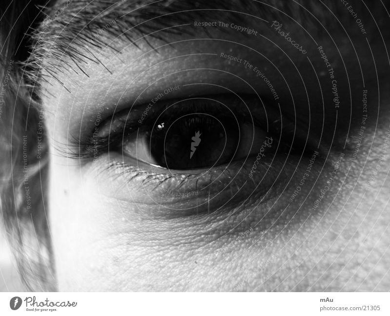 Das Auge Reflexion & Spiegelung Pupille Wimpern Mann Blick Nahaufnahme Schwarzweißfoto