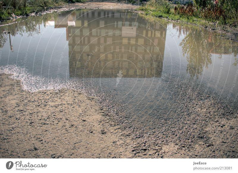 [PC-Usertreffen FFM] #4 Wasser schön Baum Pflanze Haus Fenster Gefühle Architektur Sand Gebäude Fassade Coolness Bauwerk Stadtleben trendy Pfütze