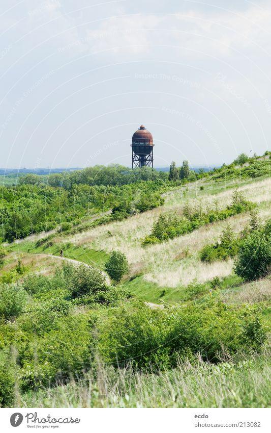 weiß grün blau Wolken Ferne kalt Gras Frühling Landschaft Luft braun Deutschland hoch Sträucher Hügel Neugier