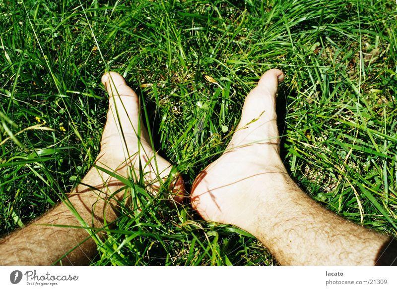 Füße im Gras grün Halm Fuß Natur Erholung Haut sitzen