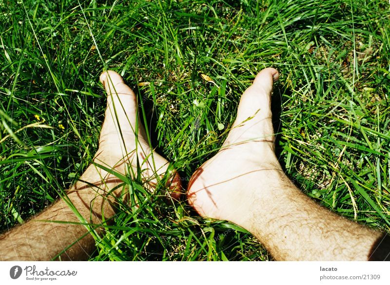 Füße im Gras Natur grün Erholung Gras Fuß Haut sitzen Halm