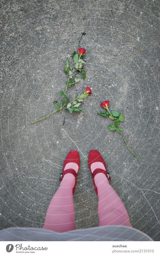 the end of the romance Blume Straße Gefühle Fuß Schuhe Rose Blumenstrauß Asphalt Wut Konflikt & Streit Strümpfe Liebeskummer Wunde Ärger Damenschuhe beenden