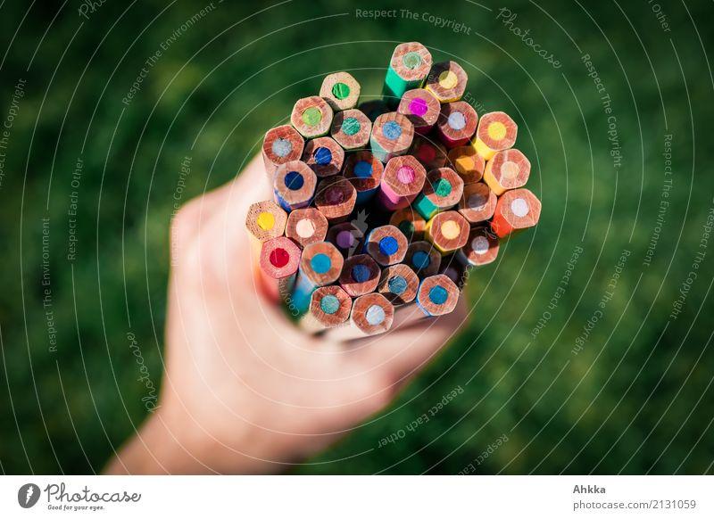 Ein Strauß Buntes II Farbe Hand Religion & Glaube Erde Zusammensein Freizeit & Hobby Kraft Kindheit Kreativität Fröhlichkeit Beginn Idee Lebensfreude