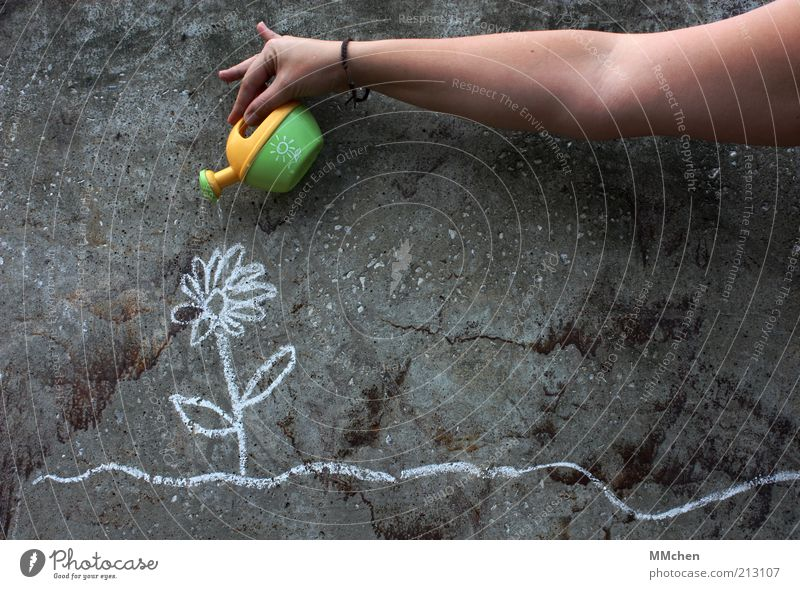 let it grow Pflanze Blume Beton Graffiti Wachstum grau achtsam gewissenhaft Umwelt Kreide Wand Gießkanne gießen kümmern Jungpflanze Arme gelb grün Farbfoto