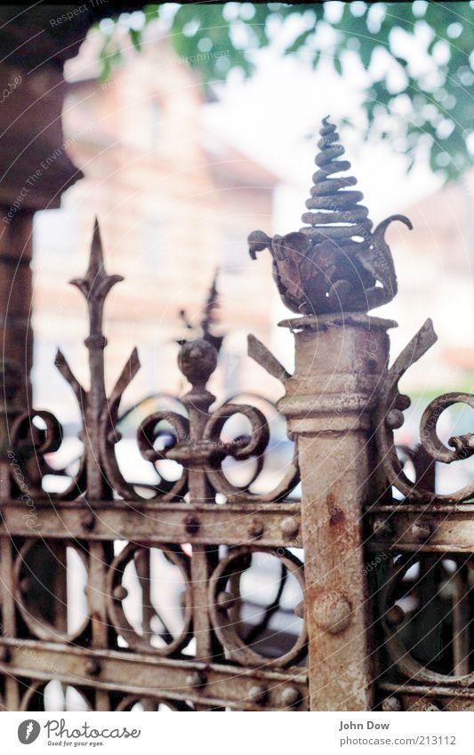 auf die spitze getrieben alt Haus Kunst Vergänglichkeit einzigartig Spitze analog Tor Grenze Stahl Verfall Rost Vergangenheit Metallfeder historisch