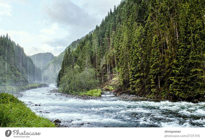 Wildwasser in Norwegen Rafting Raftingfahrer Ferien & Urlaub & Reisen Tourismus Ausflug Abenteuer Expedition Berge u. Gebirge wandern Sport Fitness