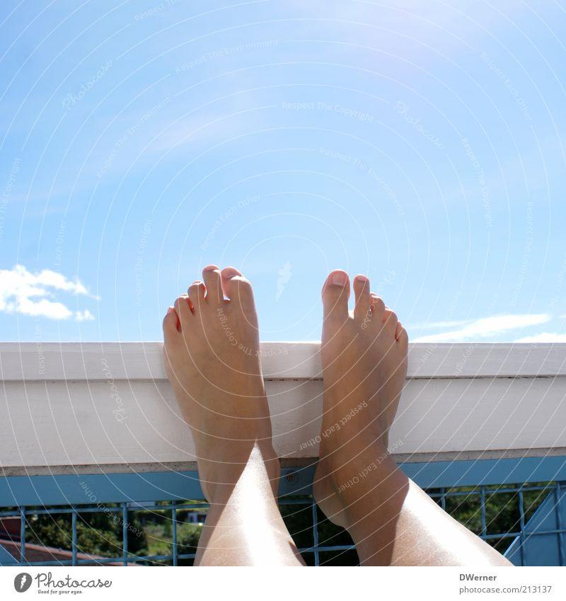Die schönsten Füße der Welt! Lifestyle Freude Pediküre Ferien & Urlaub & Reisen Sonne Sonnenbad Junge Frau Jugendliche Beine Fuß Natur Himmel Schönes Wetter