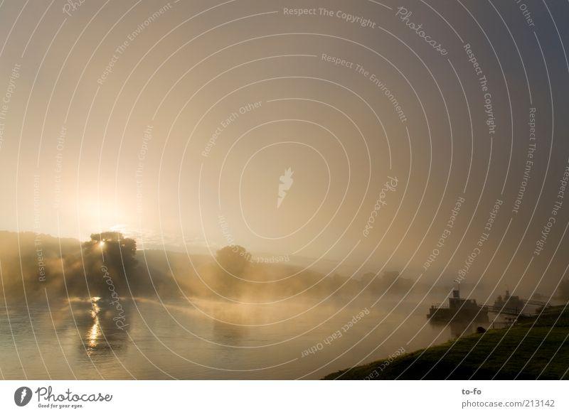 Sonnenaufgang an der Elbe Natur Wasser Himmel Sommer ruhig Landschaft Nebel Fluss Romantik Flussufer Reflexion & Spiegelung Morgennebel
