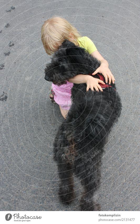 hund liebe 1 Kind Hund Tier Mädchen Zusammensein Freundschaft Kindheit berühren Zusammenhalt nah Haustier Vertrauen Fürsorge Umarmen achtsam Zärtlichkeiten