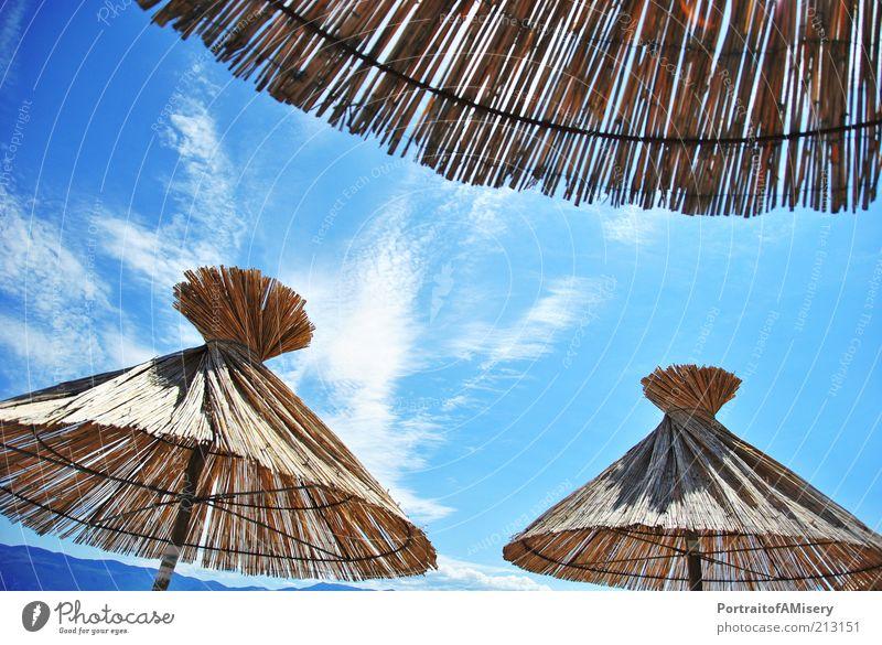 Lass doch mal die Sonne durch! Natur Himmel Sommer Ferien & Urlaub & Reisen Wolken hell frisch Idylle Sonnenschirm Schönes Wetter Blauer Himmel Wetterschutz