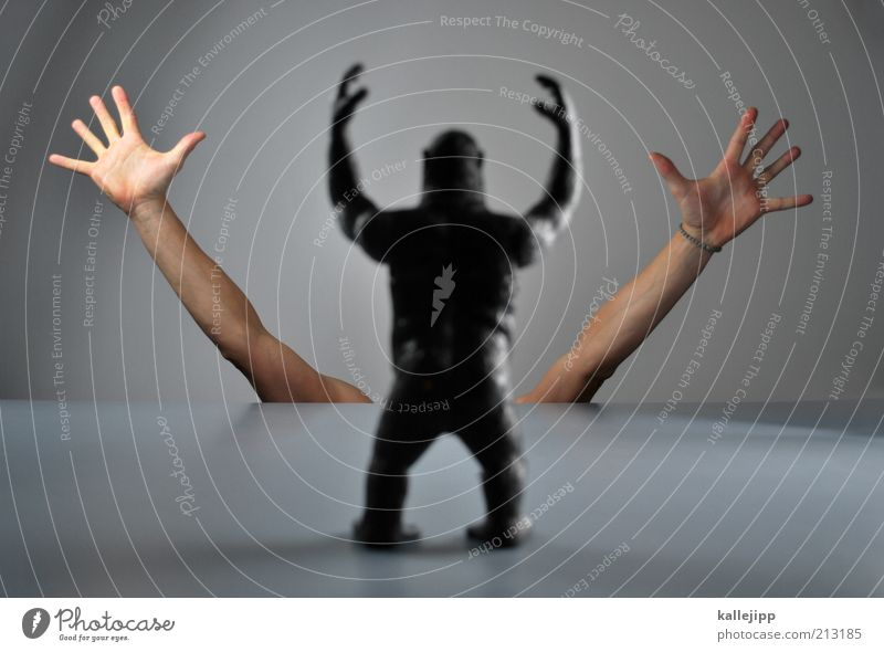 me and my monkey Mensch Hand Tier Angst Arme Finger gefährlich bedrohlich Stress Risiko Aggression Affen Hilferuf Entsetzen gestikulieren Schatten