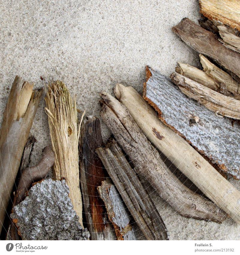 Treibholz Natur ruhig Holz grau Sand Zufriedenheit braun ästhetisch authentisch einfach natürlich Stillleben Brennholz Totholz
